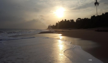 Beachfront land for sale/rent