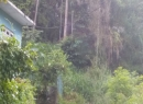 Kandy Bare Land for sale/rent