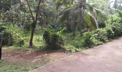 Bare Land for sale/rent