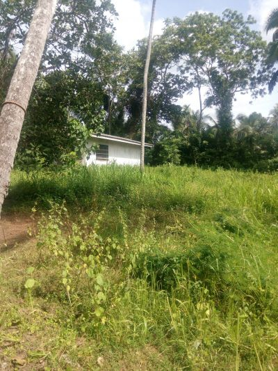 Lands for sale in Sri Lanka | House lk
