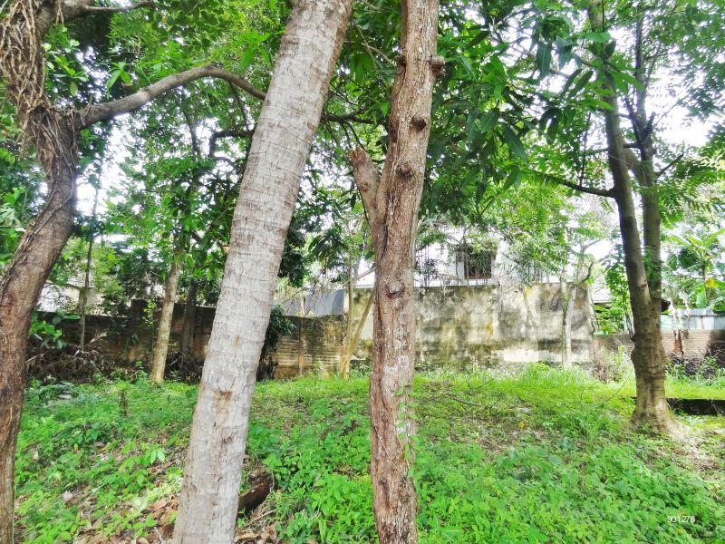 View Inside Property - Land for Sale in Battaramulla [LS33]