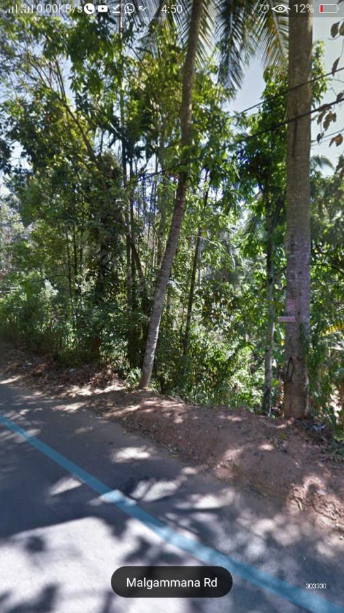 Bare Land for sale in Pilimathalawa - Quick sale 15 pch Land in