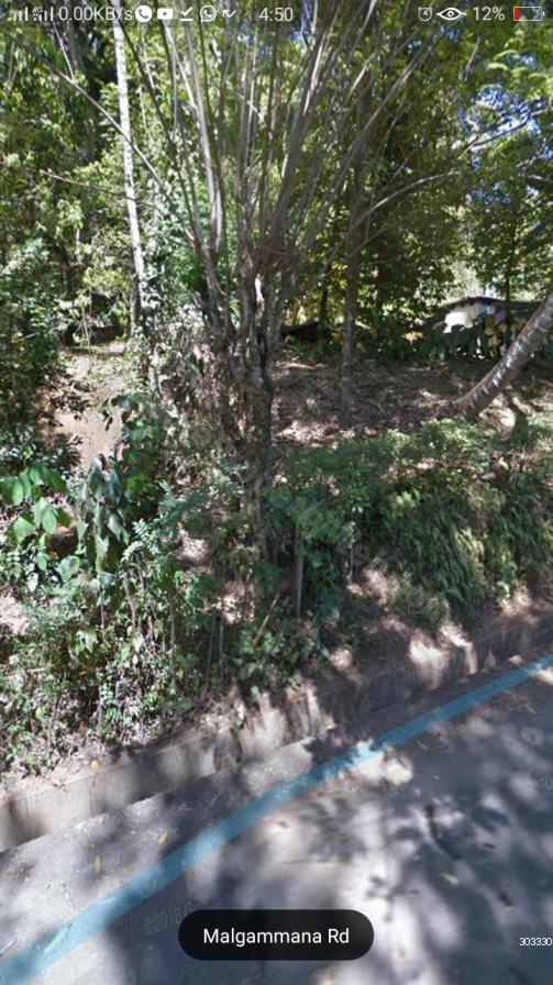 Bare Land for sale in Pilimathalawa - Quick sale 15 pch Land