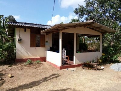 Cultivated-lands for sale in Sri Lanka | House lk