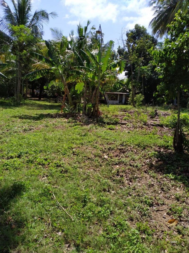 Bare Land for sale in Negombo - 14p Bare Land for Sale on Colombo-Chilaw Main Road, Kattuwa, Negambo