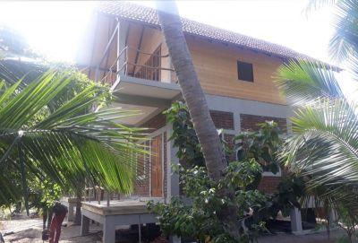 Coconut land